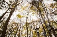 Платоновский парк, Фото: 10