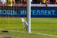«Арсенал» — «Краснодар»: Космический матч, Фото: 93