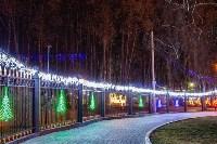 Тульские парки украсили к Новому году, Фото: 18