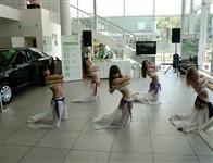 Презентация новой SKODA Octavia, Фото: 4