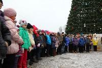 Открытие елки на площади искусств. 19.12.2014, Фото: 24