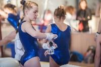 Первенство ЦФО по спортивной гимнастике, Фото: 81