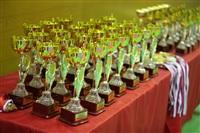 Открытое первенство и чемпионат Тульской области по сётокану, Фото: 1