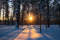 Снежное Поленово, Фото: 64