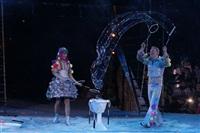 В Тульском цирке прошла премьера аква-шоу, Фото: 57
