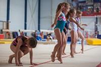 Тульские гимнастки готовятся к первенству России, Фото: 27