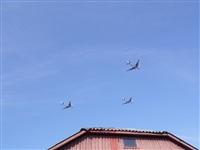 Самолеты над Плавском, Фото: 1