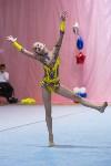 Соревнования по художественной гимнастике 31 марта-1 апреля 2016 года, Фото: 67