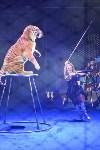 Цирковое шоу, Фото: 108
