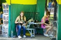 В Центральном парке Тулы проходит фестиваль помощи животным, Фото: 10