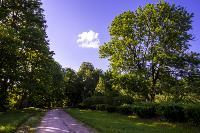 Летний день в Ясной Поляне, Фото: 14