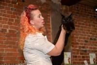 Выставка кошек в Искре, Фото: 46