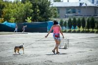 В Центральном парке Тулы проходит фестиваль помощи животным, Фото: 8