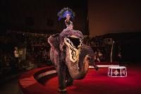 «Шоу Слонов» в Тульском цирке, Фото: 18