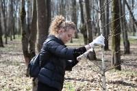 Посадка деревьев в Комсомольском парке, Фото: 40