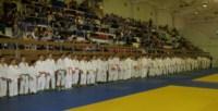 Соревнования по дзюдо на призы Владимира Груздева, Фото: 2