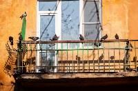 Тульский Плюшкин, Фото: 4