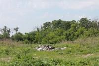 В тульском Заречье жители год добиваются ликвидации ядовитой свалки, Фото: 6