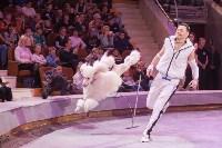 Туляков приглашают на новогоднее представление «Ёлка в цирке», Фото: 17