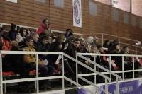 «Матч звезд» по следж-хоккею в Алексине, Фото: 1