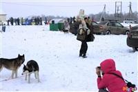 Куликово поле. Гонки на собачьих упряжках., Фото: 7