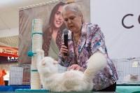 Выставка кошек в Туле, Фото: 76