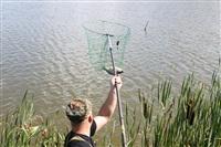 Тульские инвалиды-колясочники выехали на рыбалку, Фото: 19