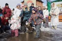 В Тульском кремле проходят масленичные гуляния, Фото: 28