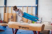 Мужская спортивная гимнастика в Туле, Фото: 8