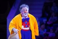 Туляков приглашают на новогоднее представление «Ёлка в цирке», Фото: 22
