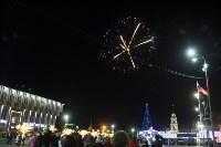 В Туле завершились новогодние гуляния, Фото: 41