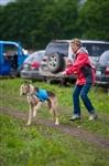 В Туле состоялись собачьи бега, Фото: 51