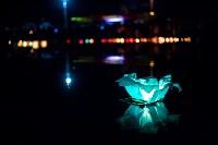Фестиваль водных фонариков., Фото: 31