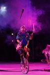 В Тульском цирке прошла премьера аква-шоу, Фото: 23