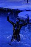 В Тульском цирке прошла премьера аква-шоу, Фото: 48