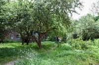Яблоневый сад и роща на ул. Серова, Фото: 9