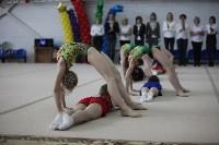 Соревнования по спортивной гимнастике на призы Заслуженных мастеров спорта , Фото: 20
