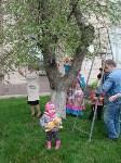 В Туле появилось Пасхальное дерево, Фото: 4