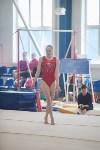 Первенство ЦФО по спортивной гимнастике, Фото: 42