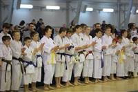 Соревнования на Кубок Тульской области по каратэ версии WKU. 29 декабря 2013, Фото: 6