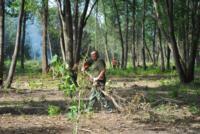 В Туле проводят работы по благоустройству зон отдыха. 26 июля 2014 год, Фото: 14