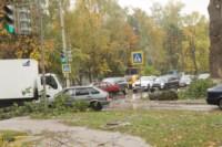 Кронирование тополей на ул. Калинина, Фото: 5