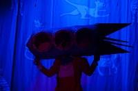Театр кошек в ГКЗ, Фото: 63