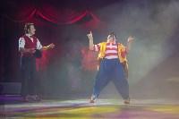 Тульский цирк, Фото: 12