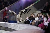 Губернаторская ёлка в цирке. 25 декабря, Фото: 16