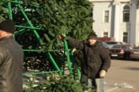 Установка ёлки на площади Ленина. 21 ноября 2014 года, Фото: 4