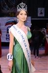 Мисс Тульская область - 2014, Фото: 9