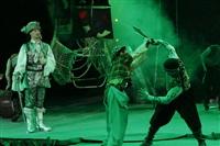 В Тульском цирке прошла премьера аква-шоу, Фото: 13