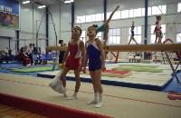 В Туле проверили ближайший резерв российской гимнастики, Фото: 1