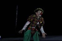 В Тульском цирке прошла премьера аква-шоу, Фото: 11